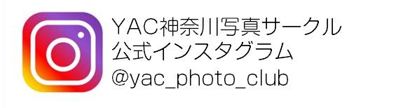 YAC神奈川写真サークルインスタグラム