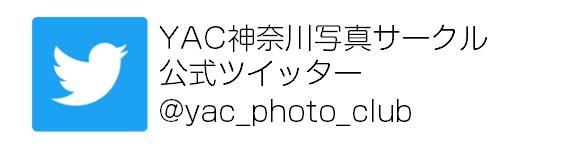 YAC神奈川写真サークルツイッター